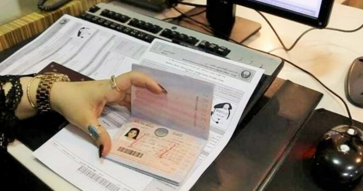 How To Check Uae Visa Status, Validity Using Your Passport Number Only